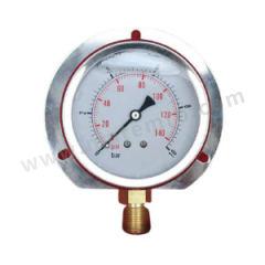 天川 304不锈钢耐震压力表(径向带后边) Y150/-0.1-0.3MPA/G1/2 材质:304不锈钢 安装方式:径向带后边 精度:1.6级 量程:-0.1-0.3MPA  个