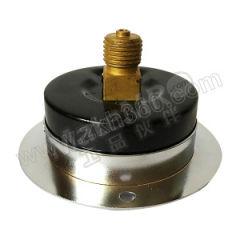 天川 304不锈钢压力表(轴向带前边) Y60/0-1.6MPA/G1/4 材质:304不锈钢 精度:2.5级 安装方式:轴向带前边 量程:0-1.6MPA  个