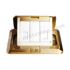 西门子 地插(带电脑电话插) 5TG02827NC1 额定电流:10A 颜色:金色  个