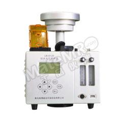 路博环保 双路综合大气采样器(加热转子) LB-6120(A)  台