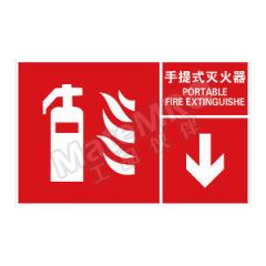 安赛瑞 左右款消防安全标识(灭火器) 20097 材质:自发光板  张