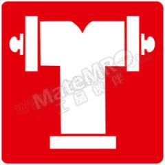 安赛瑞 消防安全标识(消防水泵接合器) 20347 材质:ABS  张