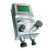 红光 压力式校验仪 CPC2000 III-B2  个