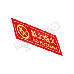 安赛瑞 经济型自发光标识(禁止烟火) 21637  包