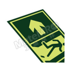 安赛瑞 经济型自发光标识(安全出口) 21628  包